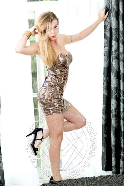 Super Trans Italiana  BOLOGNA 3427405556